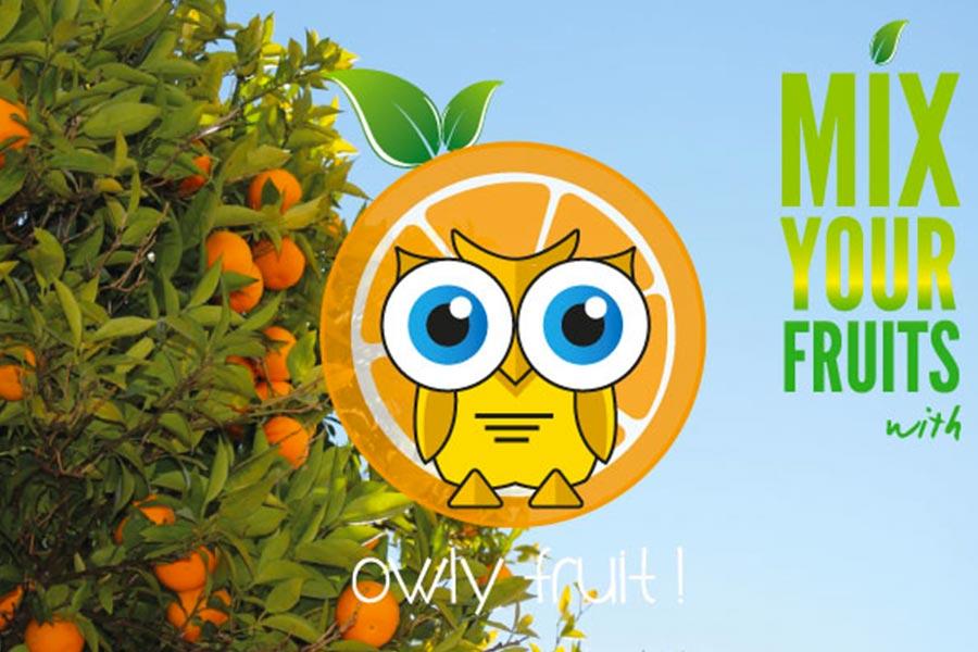 Identité visuelle Owly Fruits
